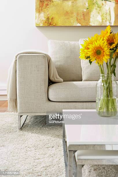 Vide salle de séjour moderne