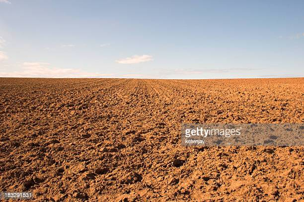 Empty muddy field of red soil