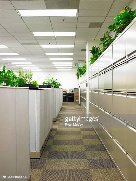 Empty office hallway