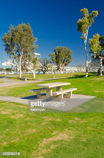 Empty Picnic Table and Trees : Stock Photo
