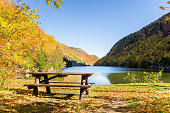 Picnic Area on the Shore of a Beautiful Mountain Lake on a Sunny Autumn Day. The Deciduous Trees that Cover the Mountains around the Lake are at the Foliage Peak.