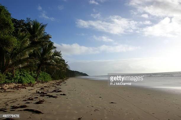 Empty Port Douglas beach