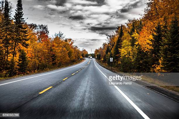 Empty road in Canadian parks area during fall