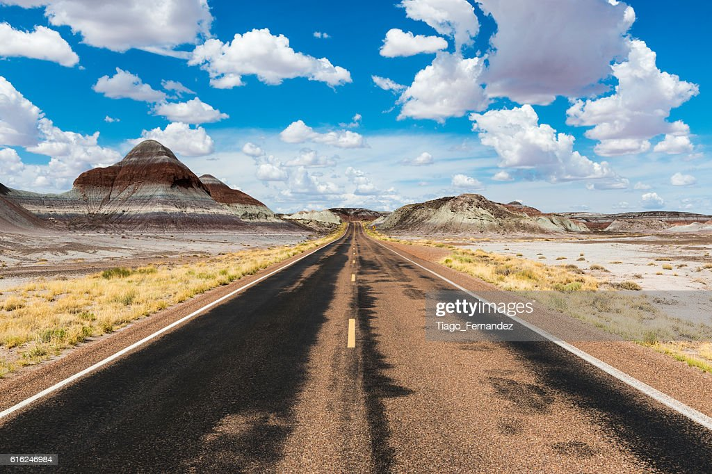Empty road in the desert in the State of Arizona : Stock-Foto