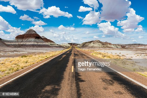 Empty road in the desert in the State of Arizona : Stock Photo