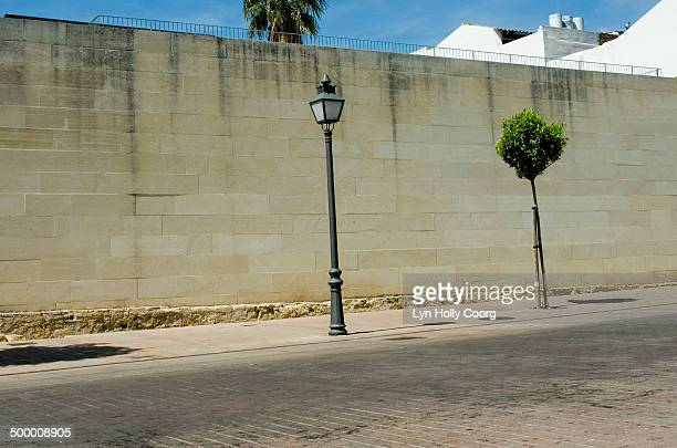 Empty road with lamppost, tree and stone wall