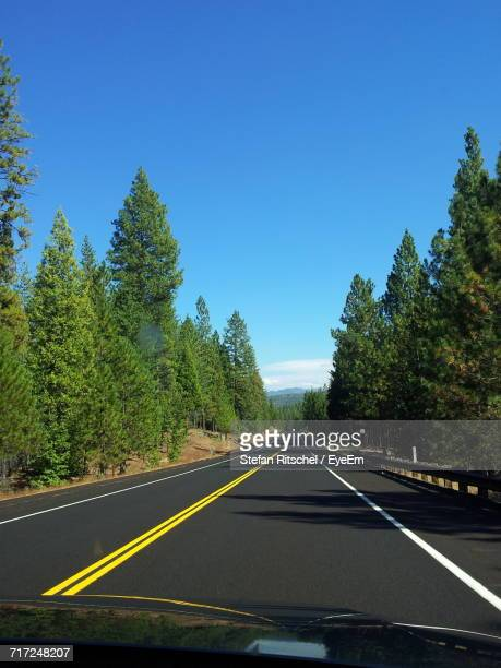 Empty Road With Trees In Background