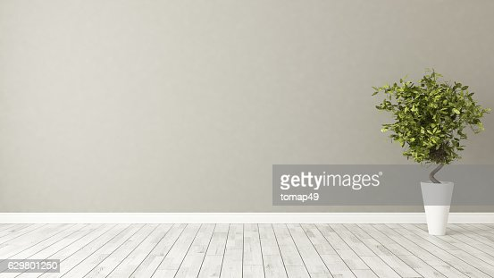 empty room with plant and brown wall : Stock Photo