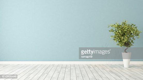 empty room with plant : Stock Photo