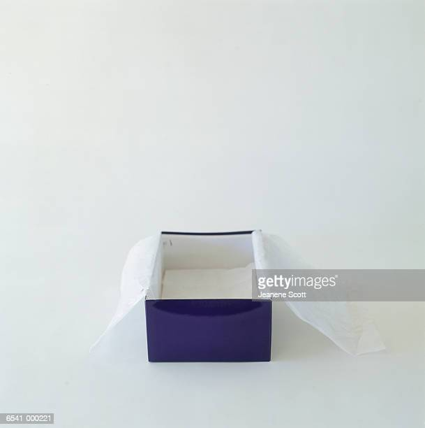 Empty Shoebox