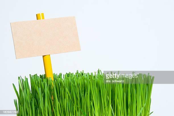 Leere Schild auf einem Stück Rasen