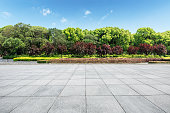 Empty city square floor and green forest nature landscape