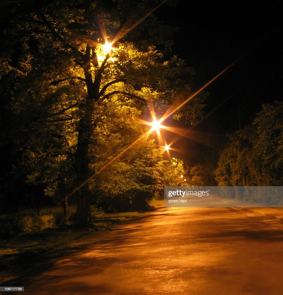 avenue by night : Stock Photo