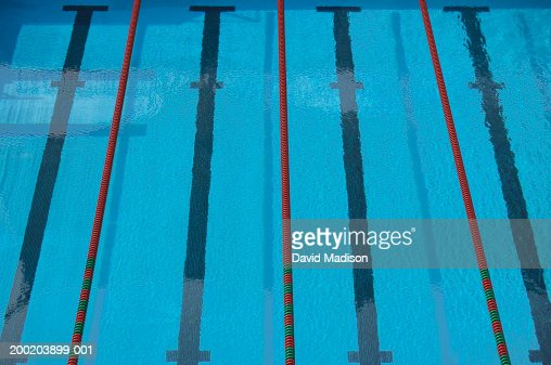 Empty Swimming Pool With Lane Lines And Lane Markers