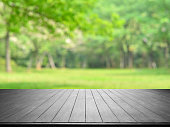 Empty Wooden Platform And Green Spring Blurred Abstract Background