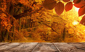 Empty wooden table over defocused autumn background with copy space