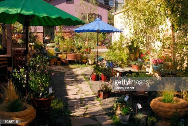 Enchanted garden on Abbot Kinney Blvd.