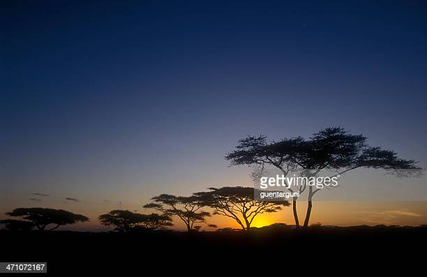 End of a Safari-day in the Serengeti (2)