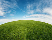 A lush green field stretches into the distance.  Fish eye, panoramic view.