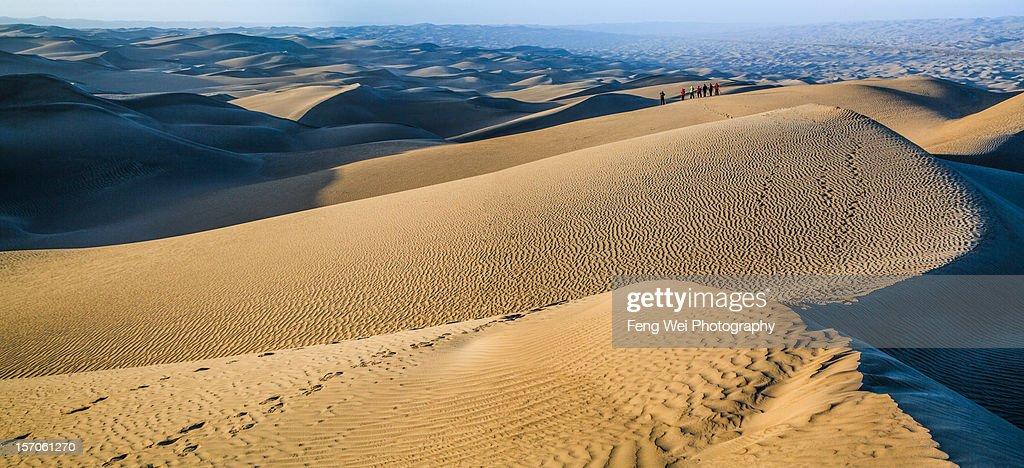 Endless Dune In Taklamakan desert