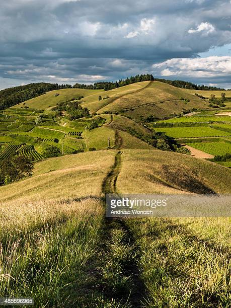 Endless Path over Rolling Hills
