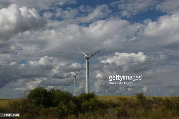 Energia eólica nos campos do Rio Grande do Sul