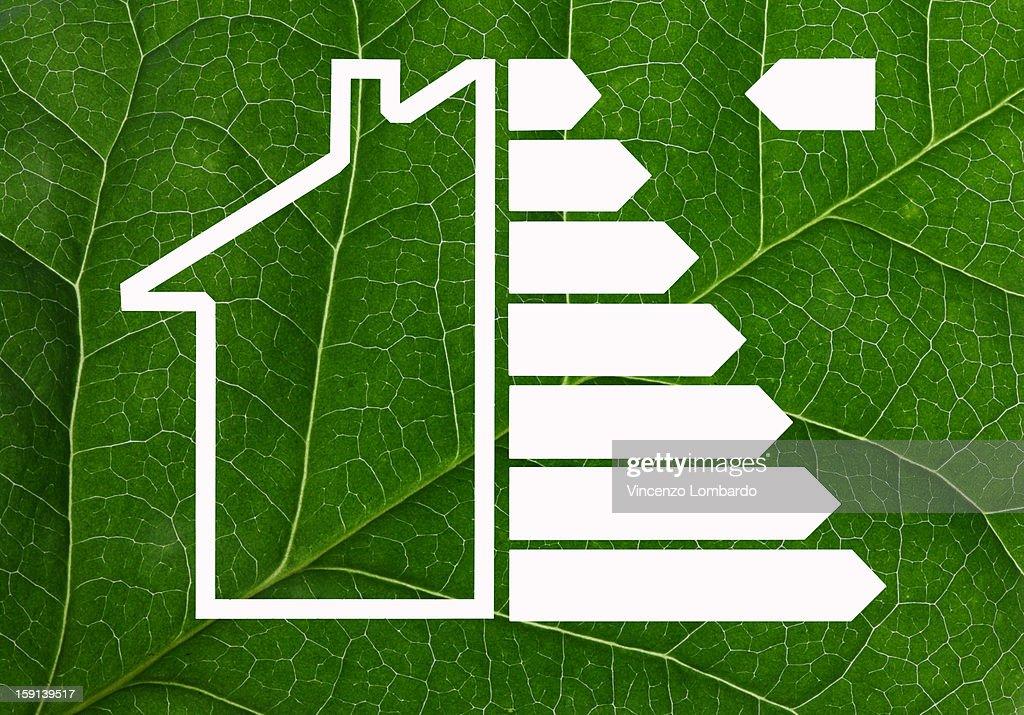 Energy efficiency house symbol on a leaf : Stock Photo