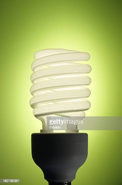 Energy efficient fluorescent bulb on a lime green backdrop
