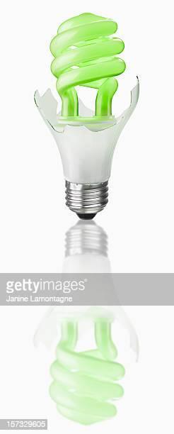 Energy Efficient light bulb hatched