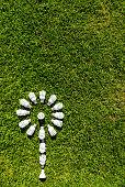 Energy efficient light bulbs on grass. Green source of energy concept