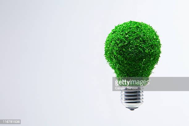 Energy saving light bulb covered in green grass
