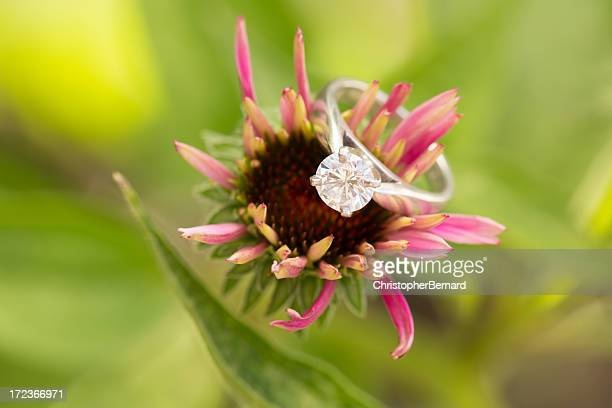 Engagement ring on purple cornflower
