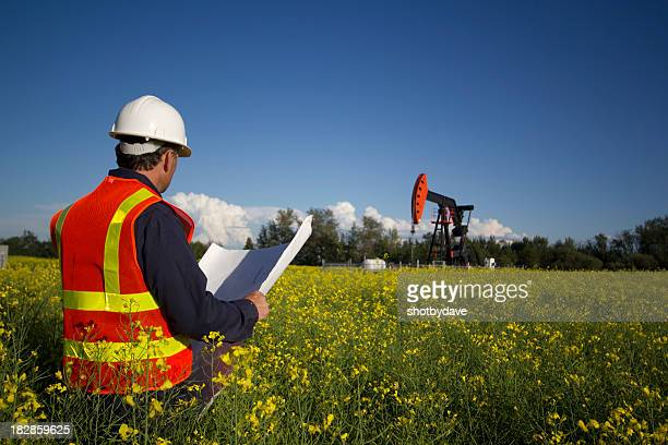 Engineer in Canola