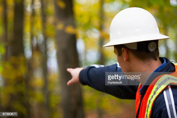 Engineer pointing towards a forest