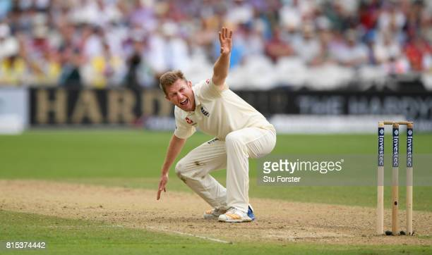 England bowler Liam Dawson appeals for the wicket of Hashim Amla which is given after review during day three of the 2nd Investec Test match between...