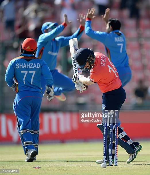 England captain Eoin Morgan is bowled by Mohammad Nabi of Afghanistan during the ICC World Twenty20 India 2016 Group 1 match between England and...