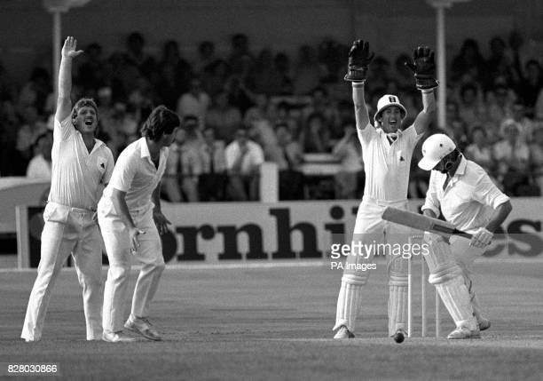 England fielders Ian Botham Allan Lamb and wicketkeeper Bob Taylor celebrate the fall of another New Zealand wicket as Warren lees is out lbw to Nick...