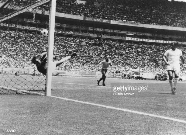 England goalkeeper Gordon Banks makes a remarkable save from a header by Pele of Brazil during their first round match in the World Cup at...