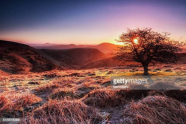 UK, England, Shropshire, Long Mynd at sunrise