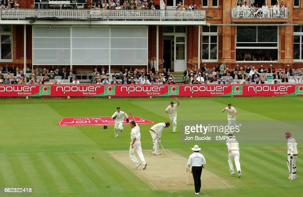 England's Liam Plunkett celebrates claiming the wicket of West Indies' Chris Gayle