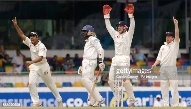 England's Ravi Bopara Matthew Prior and Paul Collingwood sucessfully appeal for the wicket of Sri Lanka's Lasith Malinga during the second Test match...