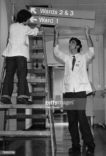 English actor Peter Mayhew helps put up signs to the wards at King's College Hospital where he works as an orderly 3rd June 1977 Mayhew who is 7'3''...