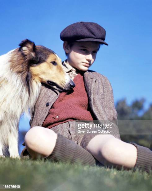 English actor Roddy McDowall with the rough collie Pal in a promotional portrait for 'Lassie Come Home' directed by Fred M Wilcox 1943