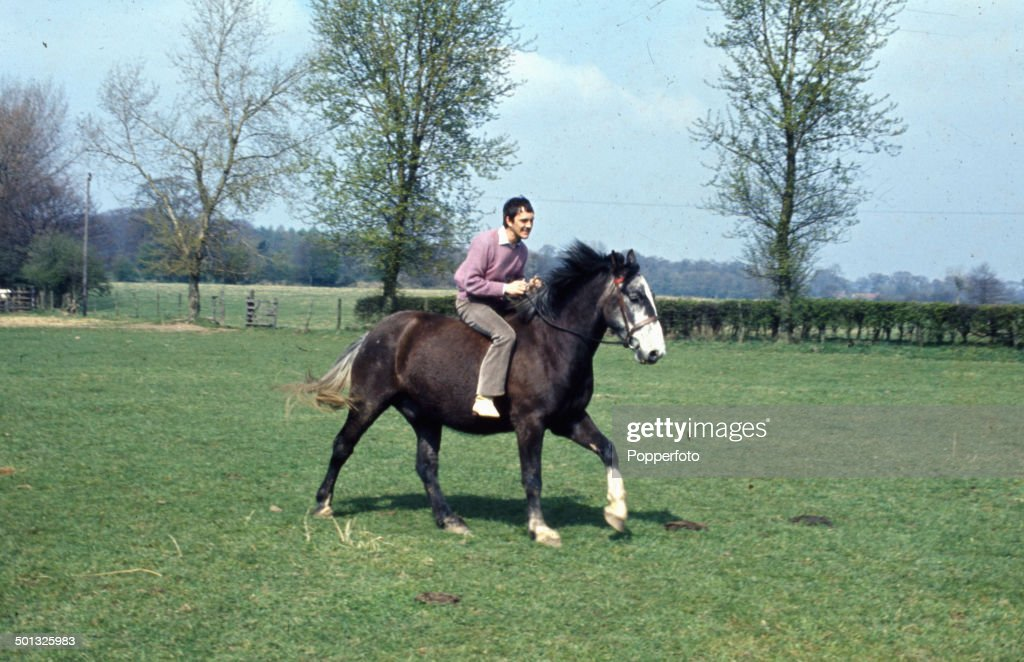 English actor Terence Stamp rides a horse in a field in 1967.