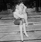 English actress and singer Anita Harris poses with an Afghan hound London UK 9th March 1971 She is to team up with Russ Conway and Clive Dunn for the...