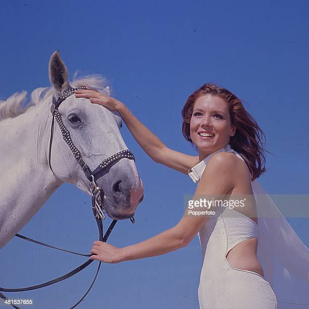 1968 English actress Diana Rigg in her role as 'Emma Peel' from the television series 'The Avengers' holds a horse by its reins in 1968