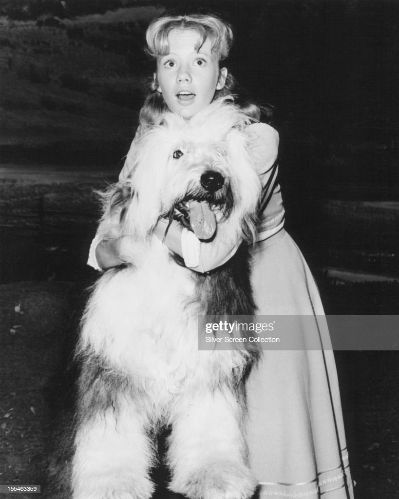 English actress Hayley Mills with an Old English sheepdog as Nancy Carey in 'Summer Magic' directed by James Neilson 1963
