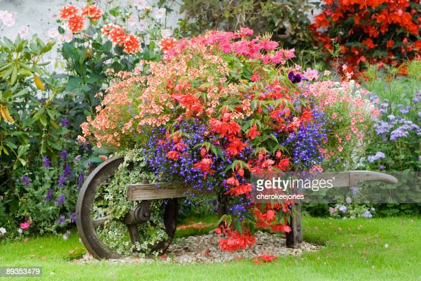 english country garden flower wheelbarrow