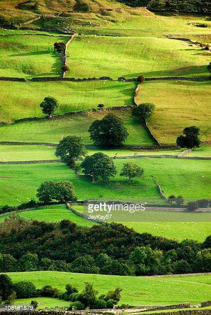 English Countryside Aerial
