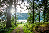 The nature photo was taken outdoors and shows a lake area in Cumbria in England, UK.